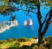 The other Capri