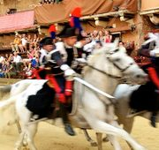 Enjoy the Palio experience!