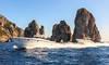 Capri Relax Transfers