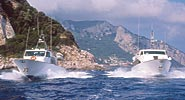 Capri Transfers - Transport and Rental
